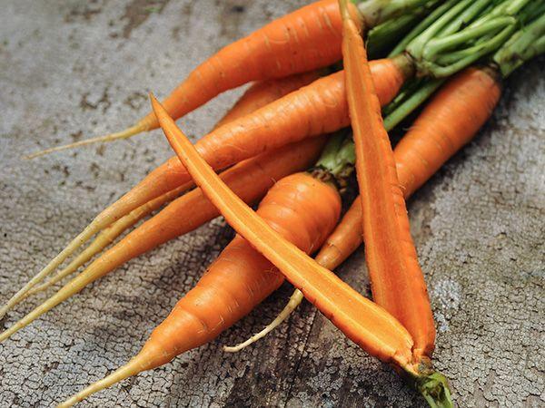 """Vegetable Seeds Gardening Planting """"Carrots"""" Danvers Half Long American Seeds"""