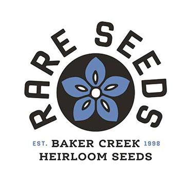 TIgger Melon Seeds Cucumis Melo Reticulatus Heirloom