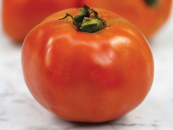 Tomato seeds New Yorker Qty 25 Fresh seeds 2018