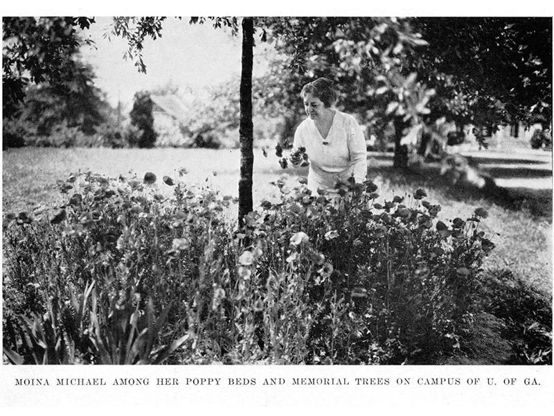 Moina Michael, creator of Red Poppy movement. Michael kneeling in garden with red poppies