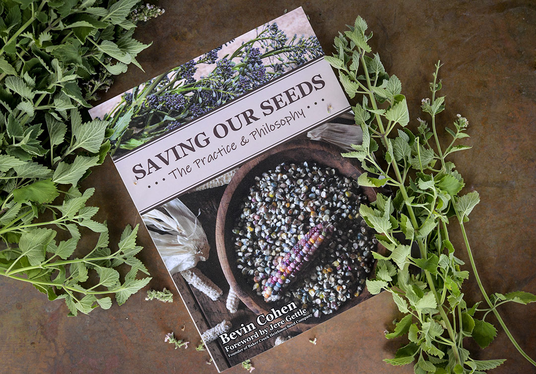 Saving Our Seeds Book by Bevin Cohen