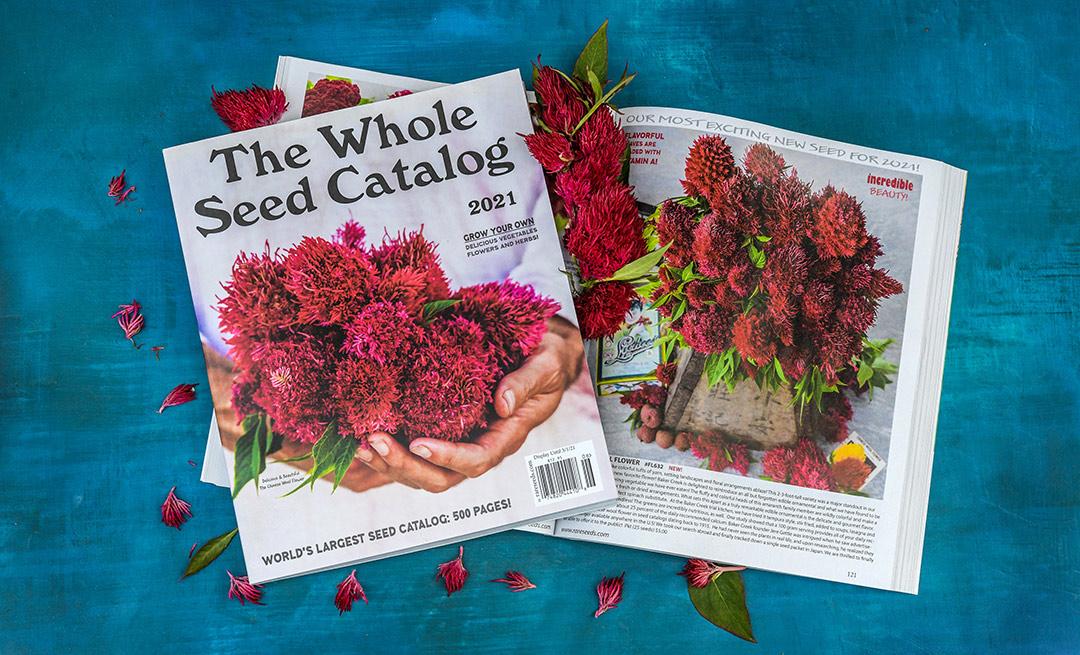 2021 Whole Seed Catalog